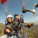 Parahawking wild tandem version